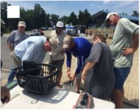 Stars and Stripes Fishing Tournament